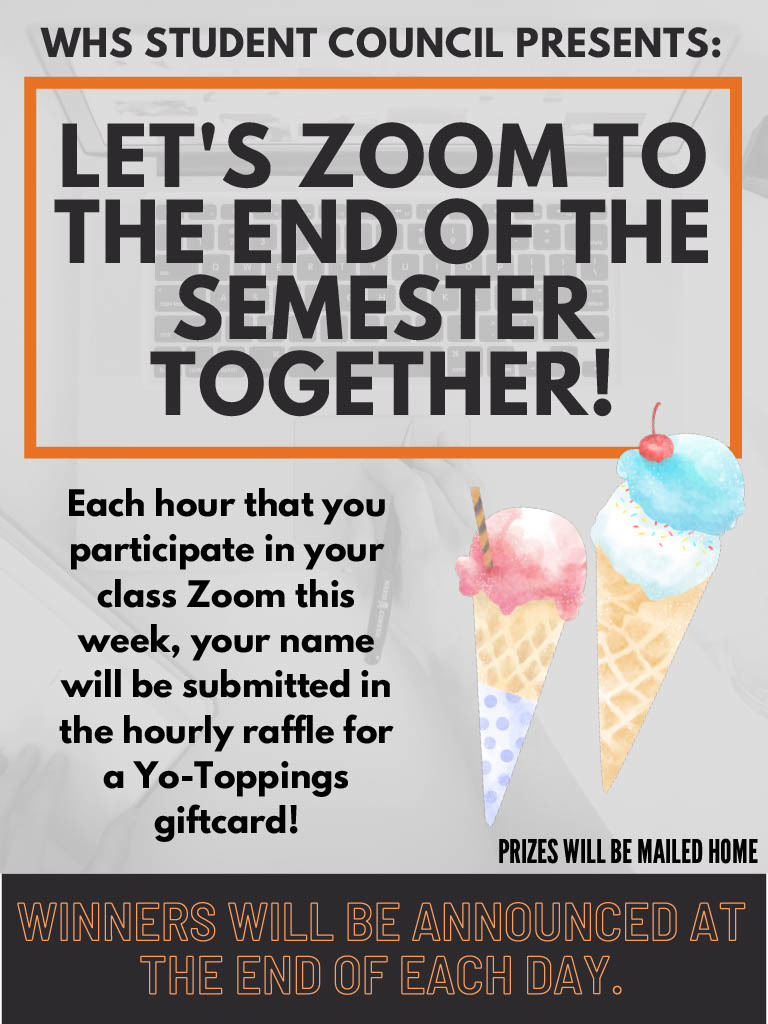 Zoom Incentive Flyer